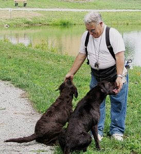 Trainer Donald Butts rewards a pair of chocolate labs for a job well done.