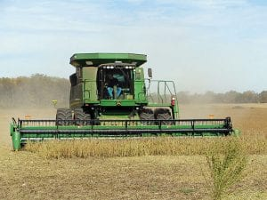 Local farmer Ed Parrish harvests soybeans in a field near Lakewood High School. According to the US Department of Agriculture, this season may yield the fourth largest American soybean crop on record.