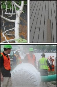 From top left clockwise, a tree branch from a tall Maple tree is coated with a thin layer of concrete; discoloration of a recently built deck compared to original color; and furnace duct cleaning vacuum recycling dust.